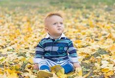 使用与黄色的小男婴在公园离开 免版税库存照片