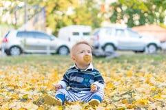 使用与黄色的小男婴留下秋天 图库摄影