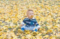 使用与黄色的小男婴留下秋天 免版税库存图片