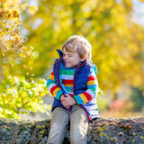 使用与黄色的小白肤金发的孩子在秋天公园离开 图库摄影