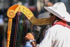 从使用为游人的韦拉克鲁斯的传统jarocho音乐家 免版税库存照片