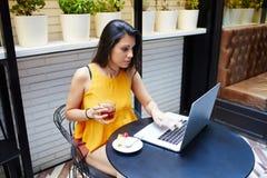 使用便携式计算机的年轻女性成功的自由职业者为距离工作,当坐在咖啡店内部时, 免版税库存图片
