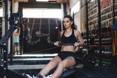 使用划船器的肌肉女性在健身俱乐部 库存图片