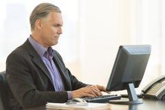 使用台式计算机的商人在办公室 免版税图库摄影