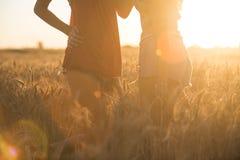 使用和拥抱在麦地的性感的女孩 免版税库存图片
