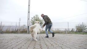 使用和跑与他的白色狗的愉快的年轻人在房子的围场慢动作的- 股票录像