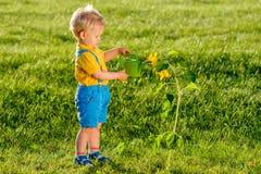 使用喷壶的一个岁男婴为向日葵 免版税库存图片