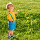 使用喷壶的一个岁男婴为向日葵 免版税库存照片