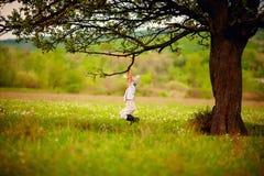 使用在一棵老树下的逗人喜爱的矮小的农夫男孩 免版税库存照片
