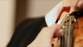 使用在低音提琴,葡萄酒的音乐家的手,低音提琴球员递弹奏最低音乐器 影视素材