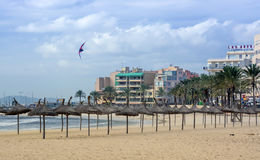 使用在冬天海滩的风筝 免版税库存照片