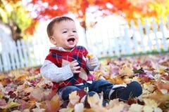 使用在叶子的逗人喜爱的男孩 库存图片