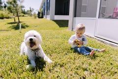 使用在后院绿草和微笑对照相机的逗人喜爱和可爱的年轻小孩男婴 免版税库存照片