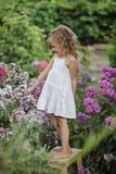 使用在夏天开花的庭院里的逗人喜爱的愉快的儿童女孩 免版税库存图片