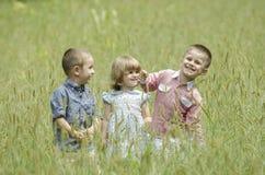 使用在夏天领域的孩子 免版税库存照片