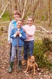 使用在有狗的森林里的小组孩子 免版税库存照片