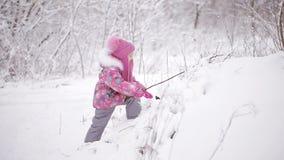 使用在有雪的一个冬天森林里的逗人喜爱的小女孩 股票视频