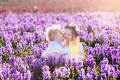 使用在有风信花的开花的庭院里的孩子开花 免版税库存照片