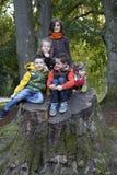使用在树干的一个小组孩子 库存照片