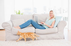 使用在沙发的妇女膝上型计算机,当通过的猫时 库存图片
