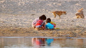 使用在沙子的村庄孩子和狗在Irrawaddy河 缅甸 股票录像