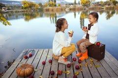 使用在湖附近的孩子在秋天 免版税库存图片