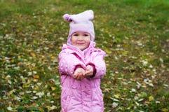 使用在秋天公园叶子的小女孩 库存图片