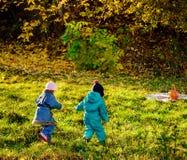 使用在秋天公园的孩子 户外儿童游戏在一晴朗的秋天天 手拉手一起跑在森林T里的男孩和女孩 免版税库存照片