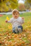 使用在秋天公园的小男孩 免版税库存照片