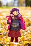 使用在秋天公园的愉快的小女孩 库存图片