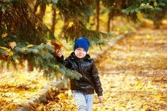 使用在秋天公园的美丽的滑稽的男孩 免版税库存图片
