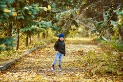 使用在秋天公园的美丽的滑稽的男孩 库存照片