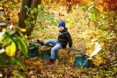 使用在秋天公园的美丽的滑稽的男孩 库存图片