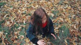 使用在秋天公园的观点逗人喜爱的小女孩,坐草投掷黄色下落的叶子4k 股票录像