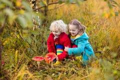 使用在秋天森林里的孩子 免版税库存图片