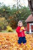 使用在秋天的逗人喜爱的小女孩 库存图片