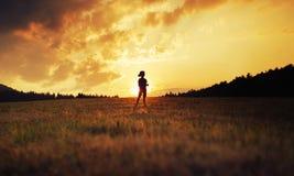 使用在草甸的愉快的孩子剪影在日落 免版税库存照片