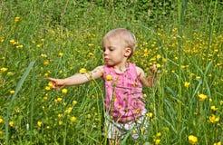 使用在长的草的逗人喜爱的小孩女孩 免版税库存照片