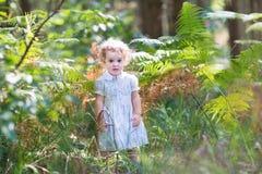 使用在晴朗的公园的白色礼服的可爱的女婴 库存图片