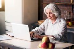 使用她的膝上型计算机的老悦目夫人 免版税库存图片