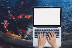 使用手提电脑的年轻女人放松户外 做自由职业者工作概念 免版税库存照片