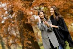 使用手机的两个相当少妇在秋天森林 免版税图库摄影