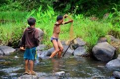 使用捕鱼网抓住鱼的老挝儿童渔夫在小河 免版税库存照片