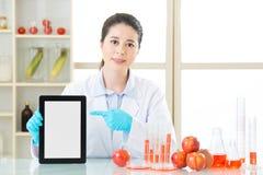 使用数字式片剂找到gmo食物的信息 免版税图库摄影