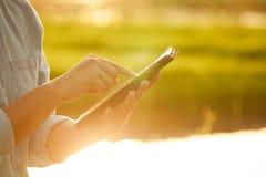 使用数字式片剂的妇女农夫在有阳光的玉米田 免版税库存照片