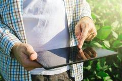 使用数字式片剂计算机的农夫在耕种的大豆播种 免版税图库摄影