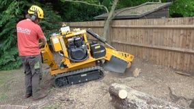 使用树桩研磨机的树木栽培家 股票录像