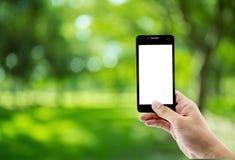 使用流动巧妙的电话的人在公园 免版税库存照片