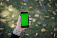 使用流动技术电话空白绿色屏幕的妇女 免版税库存图片