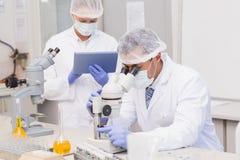 使用片剂个人计算机和显微镜的科学家 免版税库存图片